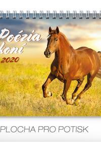 Poézia koní 2020