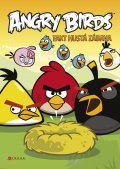 Angry Birds - Fakt hustá zábava