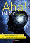Aha faktor - Co se děje ve vašem mozku, když dostanete brilantní nápad