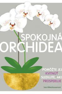 Spokojná orchidea