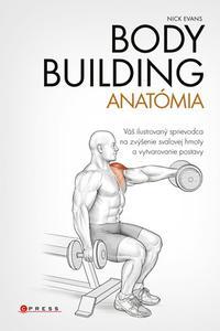 Bodybuilding - anatómia
