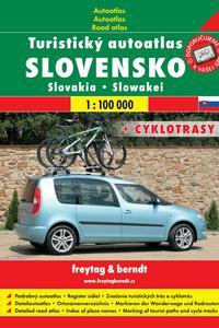 AA - Slovensko 1:100 000