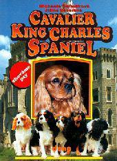 Cavalier King Charles Spaniel - Chováme Psy
