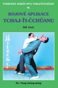 Bojové aplikace taichi 1