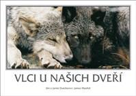 Vlci u našich dveří