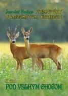 Poľovačky v Chočských vrchoch 2.diel