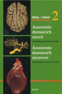 Anatomie domácích savců 2 / Anatómia domácich cicavcov 2