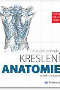 Anatomie - Praktický průvodce kreslení