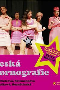 Česká pornografie - Audiokniha