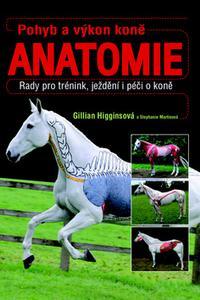 Anatomie: Pohyb a výkon koně - Rady pro trénink, ježdění i péči o koně